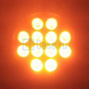 Cameo PAR 64 CAN RGBWA+UV 10 WBS_6